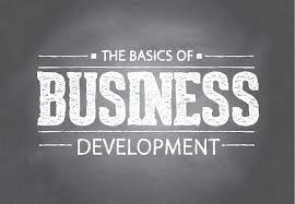 startup business development